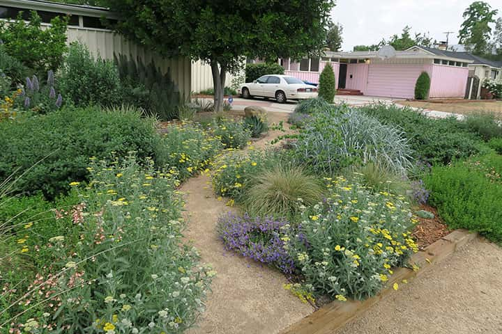 Garden 28 in Sherman Oaks