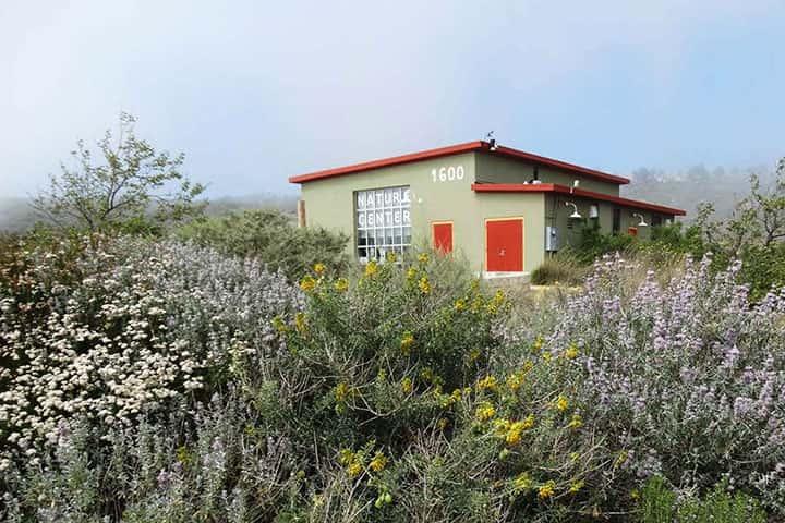 Garden 10 in San Pedro