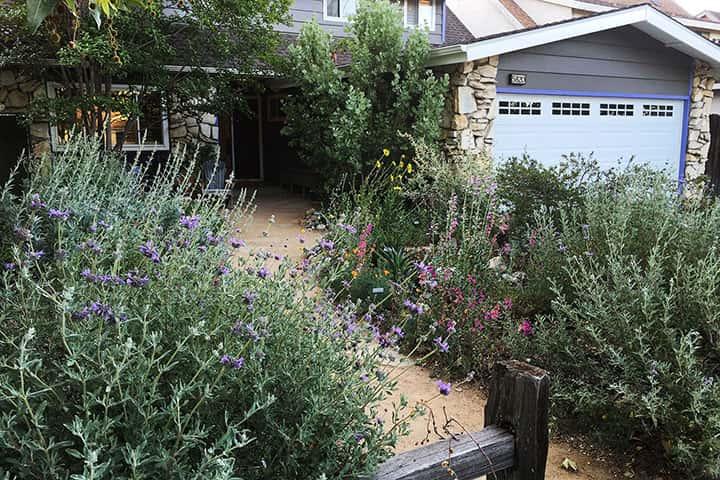 Garden 30 in Valley Glen