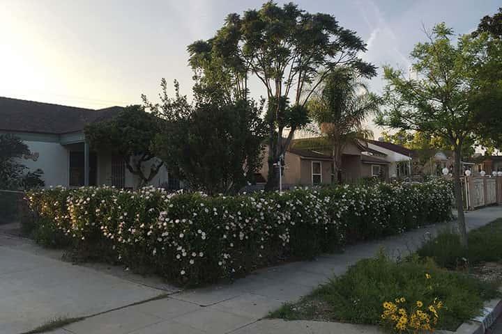 Garden 34 in Burbank