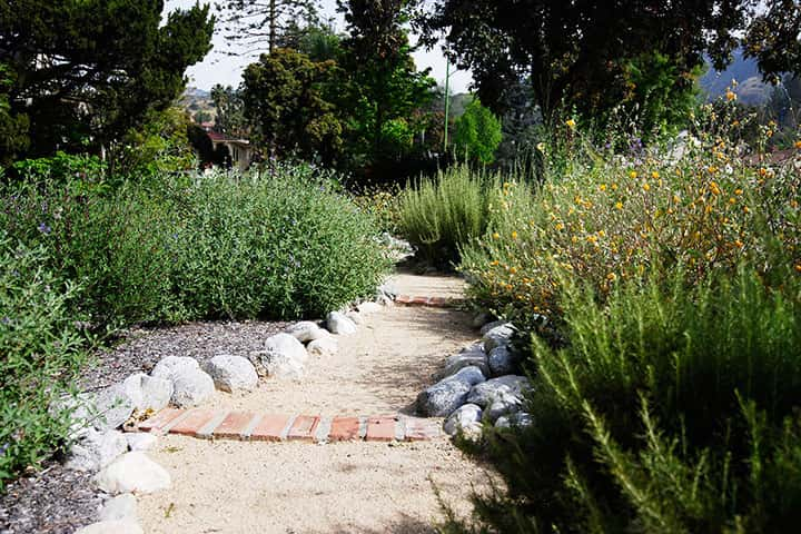 Garden 35 in Glendale