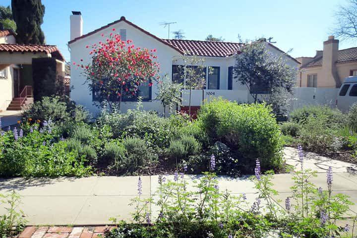 Garden 36 in Glendale