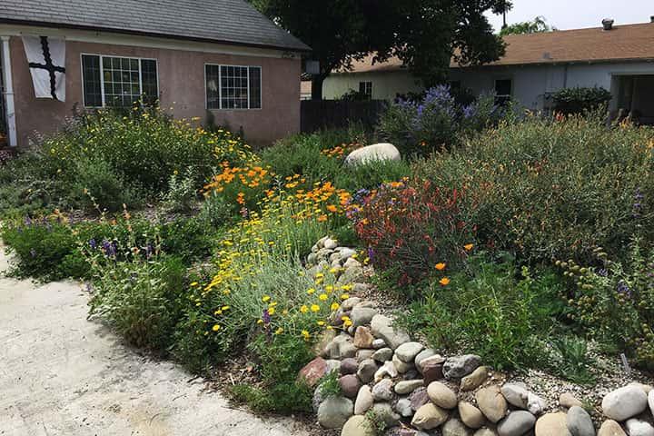 Garden 41 in Pasadena
